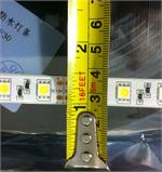 12mm width for 5054 LED Strip Light