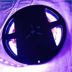 RGBW LED Strip in Bright Violet