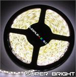 Nova Bright Superbright White 5054SMD Flexible LED Light Strip 16ft Reel Only Non - Waterproof
